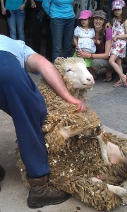 Lambs Down Festival