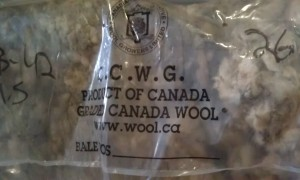 Canadian Coop Wool